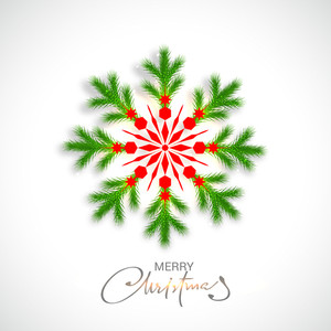 Creative snowflake made by fir tree branches on shiny background for Merry Christmas celebration.