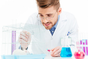 Scientist doing experiments with rat