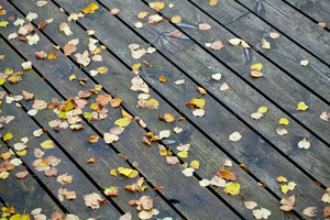 Boards with leaves background