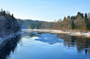 Gauja River Valley Winter Landscape. Sigulda