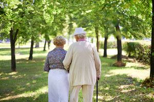 Back View Of Serene Senior Couple Taking A Walk In The Park In Summer