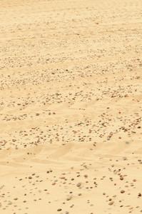 Sand Beach Close-up