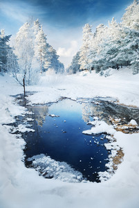 Reflection In Wintry Scene