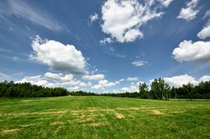 Classic Rural Landscape. Green Field Against Blue Sky