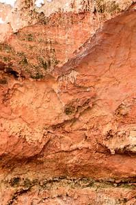 Orange Sandstone Close-up