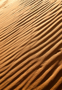 Desert Dunes Close-up