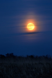 Full Moon Over Rural Landscape
