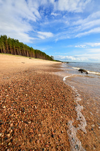 Baltic Sea Shore In Latvia