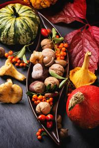 Autumn Background With Pumpkins