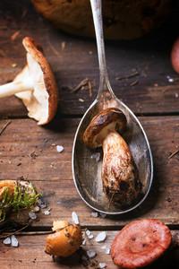 Mushroom In Spoon