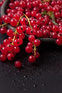 Red Currant Over Black