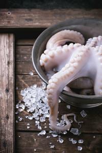 Octopus On Ice
