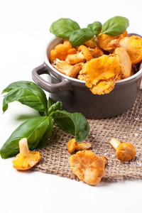 Pot Of Chanterelles