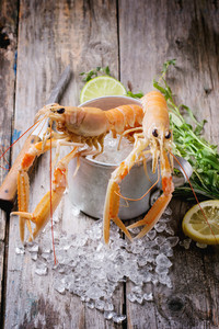 Langoustines On Ice