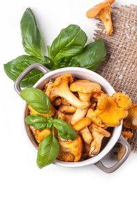 Pot Of Mushrooms Chanterelles