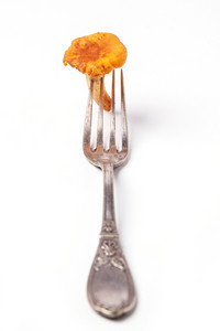 Vintage Fork With Chanterelle