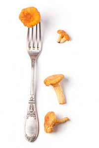 Fork With Chanterelle Over White