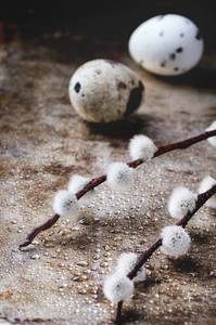 Willow And Quail Eggs