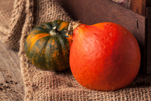 Tow Mini Pumpkins