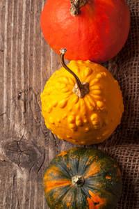 Three Mini Pumpkins