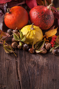Pumpkins With Acorns And Leaves