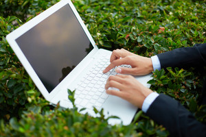 Image Of Female Hands Typing On Laptop Among Green Leaves