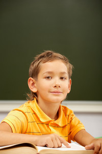 Portrait Of Happy Schoolboy Looking At Camera During Reading Lesson