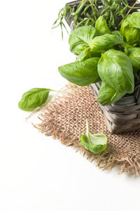 Basket Of Basil