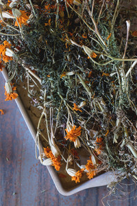 Dry Tagetes Flowers