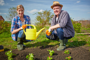 Image Of Couple Of Farmers Working In The Garden