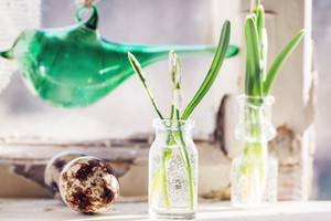 Easter Interior With Snowdrops And Quail Eggs