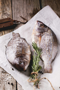 Tow Raw Fish With Rosemary
