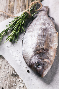 Raw Dorado Fish With Rosemary