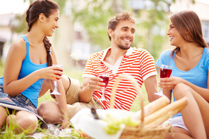 Happy Young Friends Drinking Red Wine At Picnic In The Country