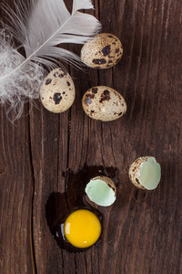 Broken Quail Egg With The Leaked Yolk