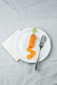 Plale With Sliced Carrot