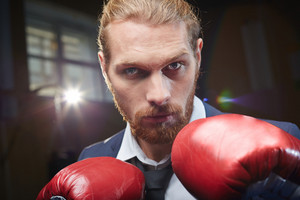Bearded Businessman In Boxing Gloves Looking At Camera