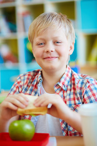 Happy Schoolboy With Sandwich Looking At Camera