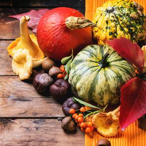Pumpkins, Nuts And Berries