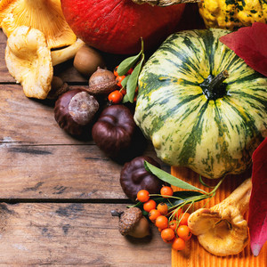 Pumpkins, Nuts And Berries
