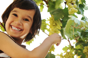 Smiling preteen boy with grapes on grapevine background