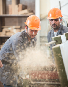 Workers in industrial cutting wood factory