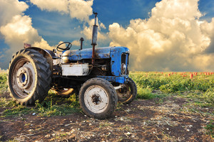Very old tractor in field