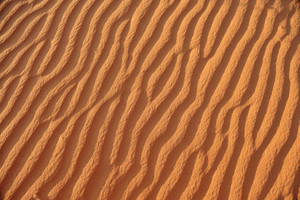 Beautiful wave patterns found in a sand dune in the desert