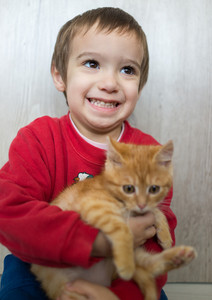 Happy little kid holding yellow kitty cat