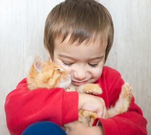 Happy little kid holding yellow kitty cat