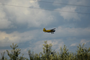 Agricultural aircraft an-2 maize. agricultural machinery.