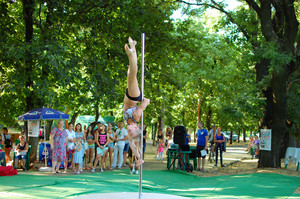 Exercises on a pole