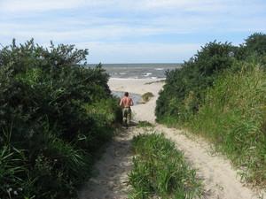 Jog to the sea