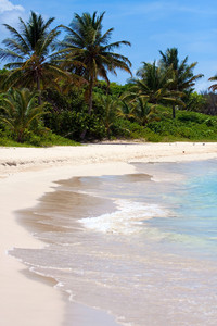 White Sand Puerto Rico Beach